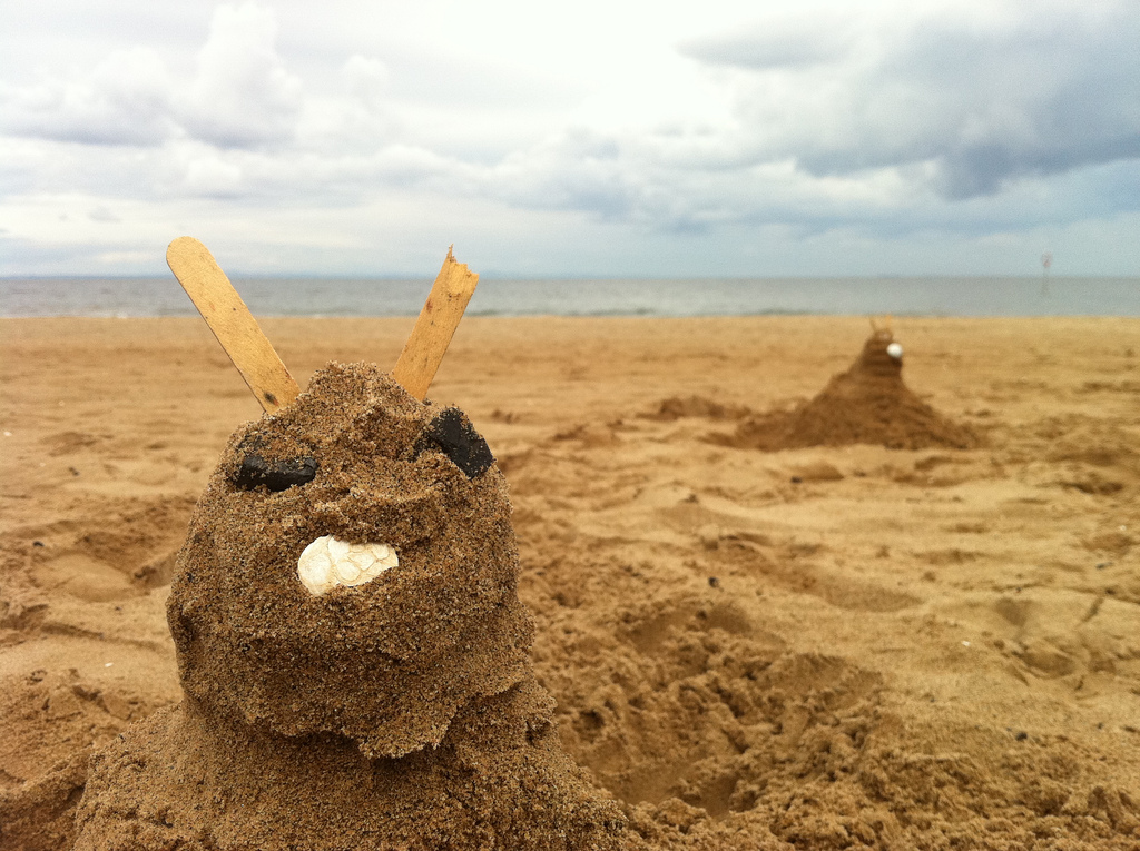 Sand Bunnies on Portobello Beach