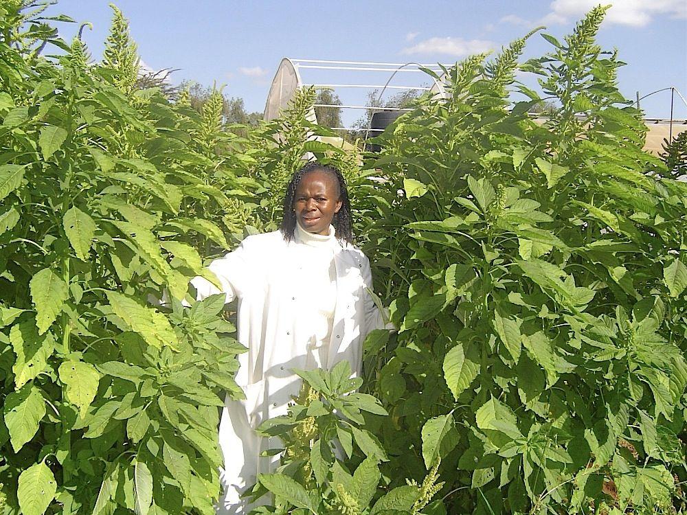 Professor Mary Abukutsa-Onyango