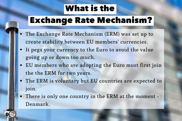 What-is-the-Exchange-Rate-Mechanism_